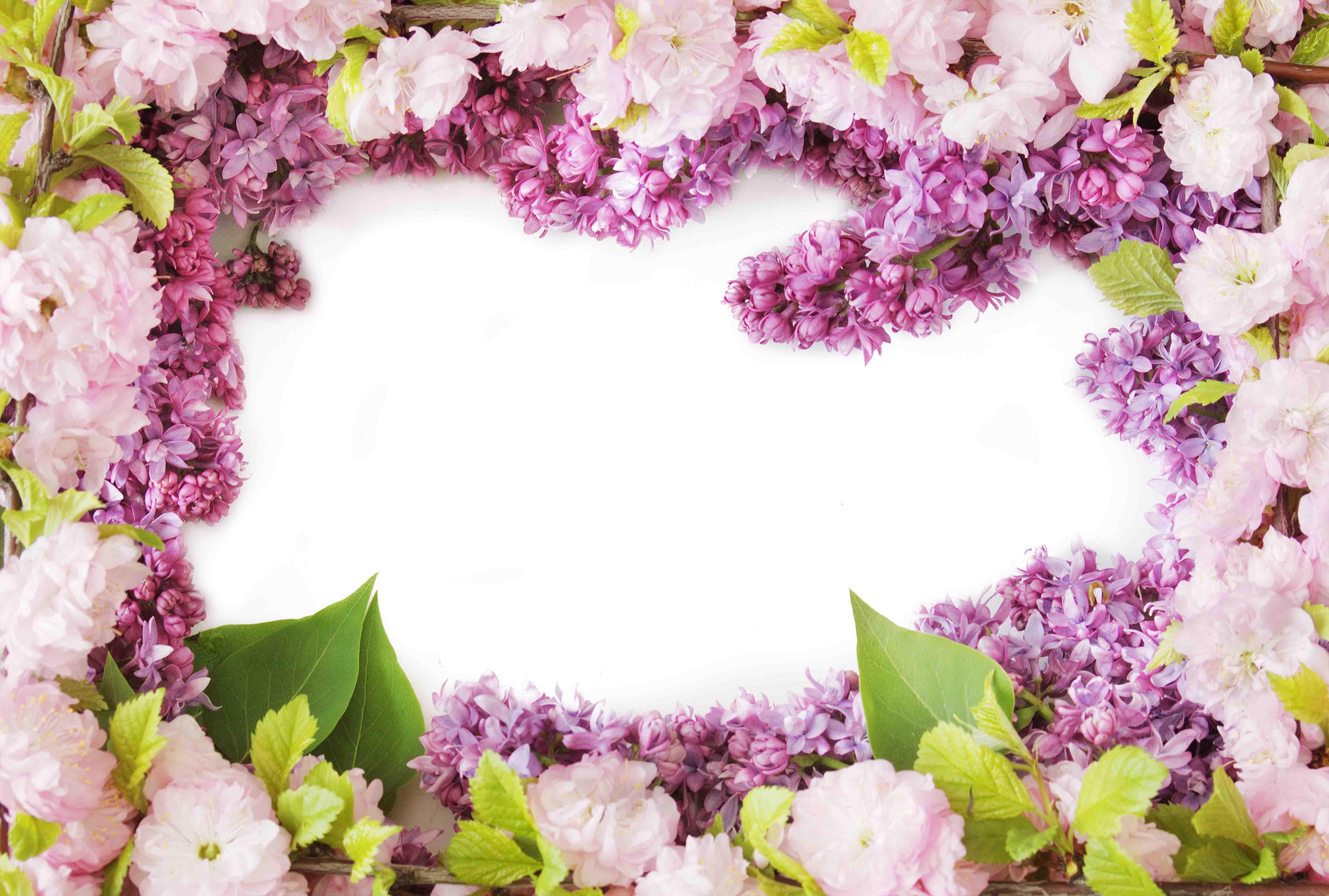 Картинки бухаем, картинка с рамкой из цветов